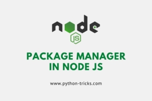 package manager in node js